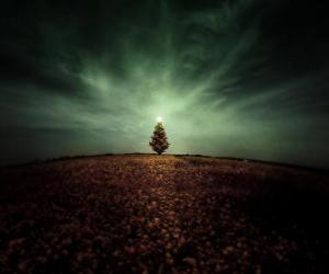 Christmas Tree in Field puzzle