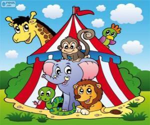 Circus animals puzzle