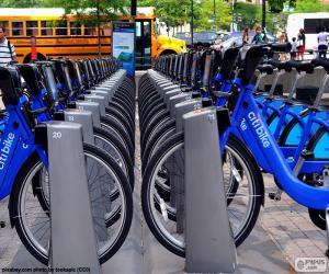 Citi Bike, New York puzzle