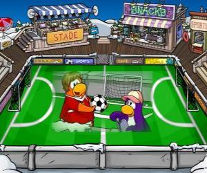 Club Penguin: The football game in the Club Penguin puzzle