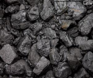 Coal puzzle