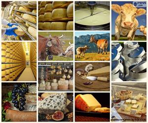 Collage of cheese puzzle