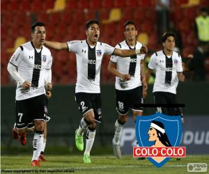 Colo-Colo, Apertura 2015 puzzle