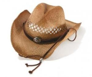 Cowboy hat puzzle