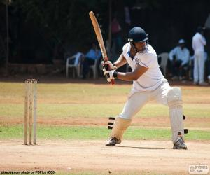 Cricketer ready to hit the ball puzzle