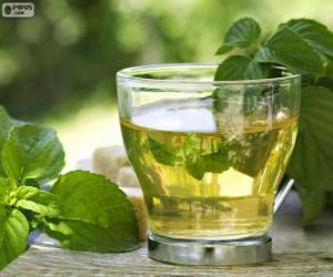 Cup of green tea puzzle