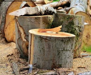 Cut tree puzzle