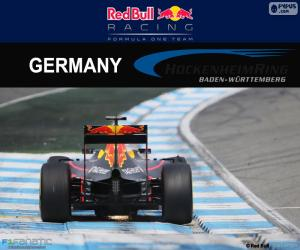 D. Ricciardo, 2016 German Grand Prix puzzle
