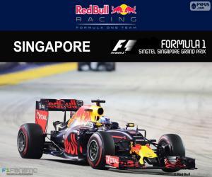 D. Ricciardo, 2016 Singapore Grand Prix puzzle