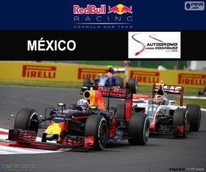 Daniel Ricciardo, 2016 Mexican Grand Prix puzzle