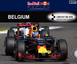 Daniel Ricciardo, GP Belgium 2016 puzzle