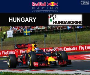 Daniel Ricciardo, GP Hungary 2016 puzzle