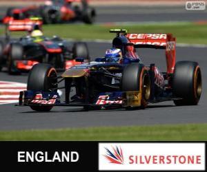 Daniel Ricciardo - Toro Rosso - Silverstone, 2013 puzzle