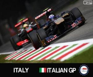 Daniel Ricciardo - Toro Rosso - Monza, 2013 puzzle