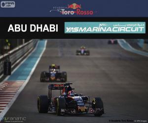 Daniil Kvyat, 2016 Abu Dhabi GP puzzle