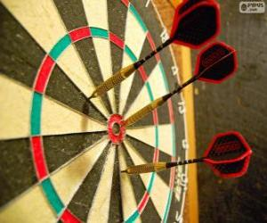 Darts and dartboard puzzle