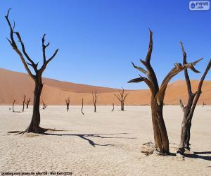 Deadvlei, Namibia puzzle