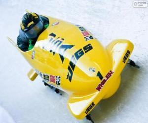 Descending in a bobsleigh or bobsled puzzle
