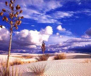 Desert Landscape puzzle