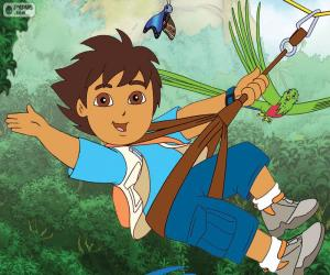 Diego and the Zip-line puzzle