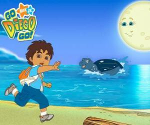 Diego on the beach and a sea turtle in water puzzle