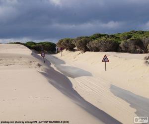 Dunes, road puzzle