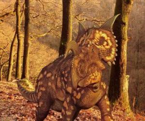Einiosaurus is a dinosaur only Montana, USA puzzle