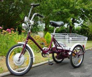 Electric tricycle puzzle