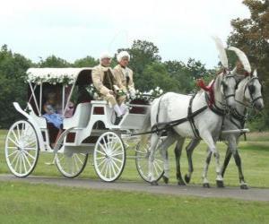 Elegant horse carriage puzzle