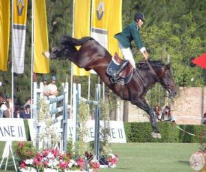 Equestrianism - Horse and rider in the jumping exercise puzzle