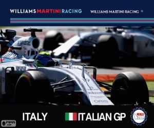 F. Massa, 2015 Italian Grand Prix puzzle