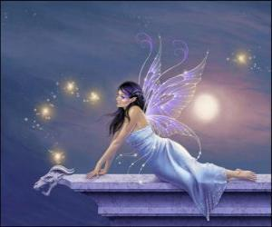 Fairy in a starry sky puzzle