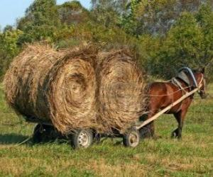 Farmer with a horse drawn carriage puzzle