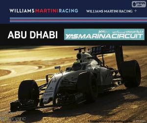 Felipe Massa, 2016 Abu Dhabi GP puzzle