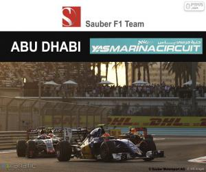 Felipe Nasr, 2016 Abu Dhabi GP puzzle