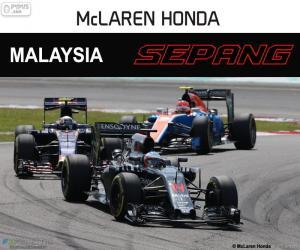 Fernando Alonso, Malaysian GP 2016 puzzle