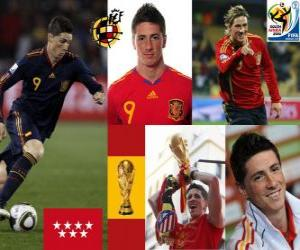 Fernando Torres (It made us dream) Spanish National Team forward puzzle