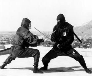 Fight between two ninjas puzzle