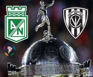 Final Copa Libertadores 2016 puzzle