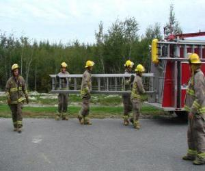 Firefighters carrying a ladder puzzle
