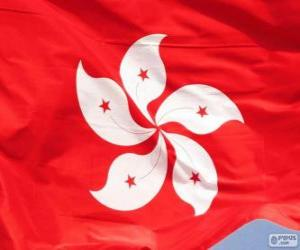 Flag of Hong Kong puzzle