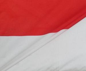 Flag of Indonesia puzzle