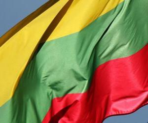 Flag of Lithuania puzzle