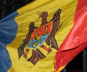Flag of Moldova puzzle