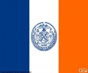 Flag of New York puzzle