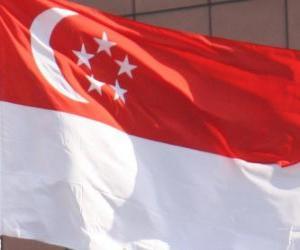 Flag of Singapore puzzle