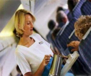 Flight attendant puzzle