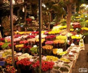 Flower market, Amsterdam, Netherlands puzzle