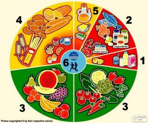 Food groups puzzle