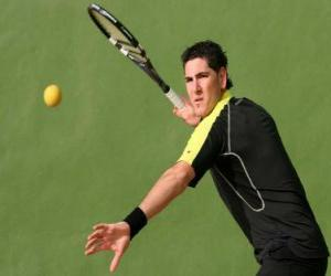 Frontenis player ready for a coup puzzle